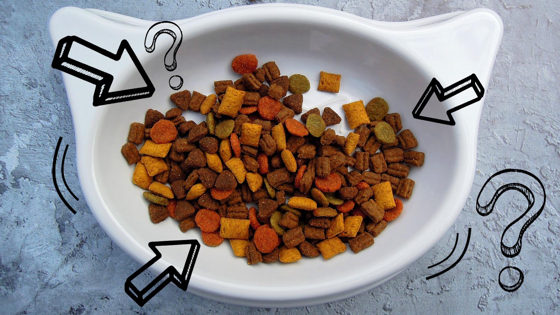 karma dla psa i karma dla kota