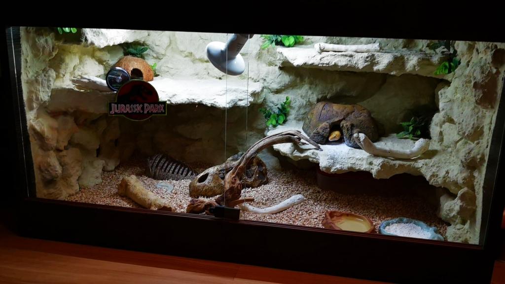 terrarium dla gekona